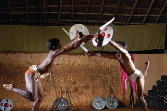 Kalaripayattu art martial keralais