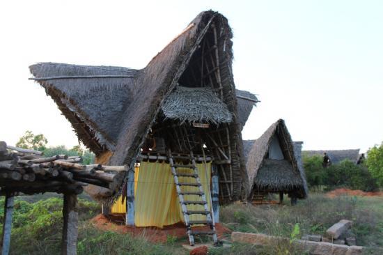 Maison sadhana forest