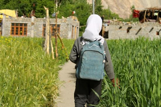 Turtuk village pakistanais champ de blé